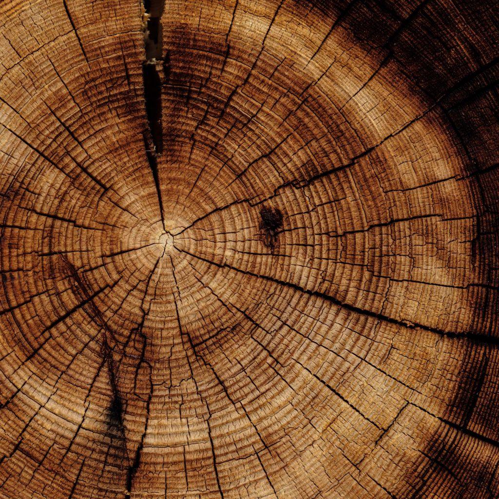 Wood Element